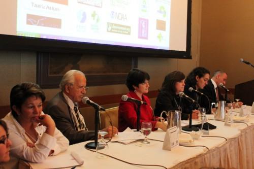 panel, global clinton initiative